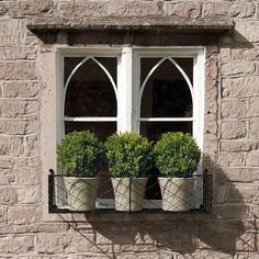 Kitchen window I
