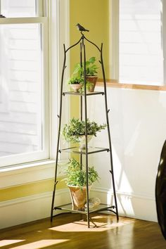 Stand(s) for your plants | Gardeners - Ahomeround