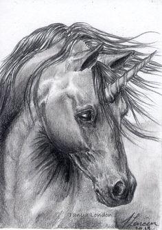 "Black Unicorn ""Jett"" Fantasy Graphite Drawing Original ACEO Art by Tanya London   eBay"