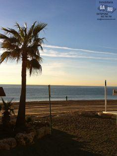 Paseo por la Arena de la Playa.Martes 29 de Enero de 2013 a las 09:15 Horas. Paseo Marítimo de Estepona.