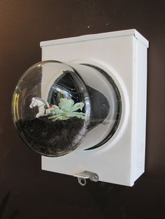 Recycled Utility Box Terrarium. I've yet to make mine look this cool (awesome wedding present)