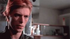 celebrities david bowie 70s the man who fell to earth thomas newton