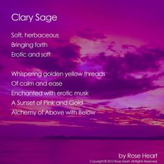 Inspired by clary sage, you will be uplifted and inspired by these peaceful, tranquil words.