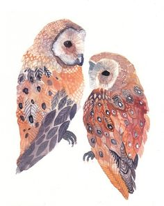 owl, painting, watercolor