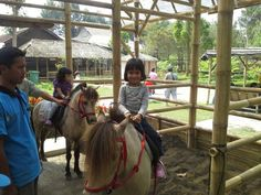 Pony riding @ Jendela Alam
