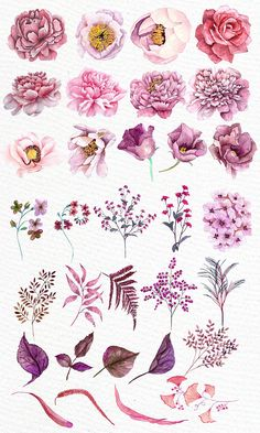 Pink flowers clipart WATERCOLOR CLIPART Floral clipart Pink watercolor Diy invites Greeting cards Wedding flowers Watercolor flowers You will receive 32 elements saved in PNG High resolution 300 dpi elements size aprox 7 All elements are hand pa - p Watercolor Clipart, Watercolor Flowers, Watercolor Paintings, Watercolor Wedding, Diy Painting, Wedding Drawing, Watercolor Sunset, Drawing Flowers, Watercolour