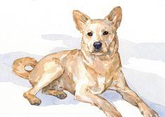 5x7 dog watercolor 2013