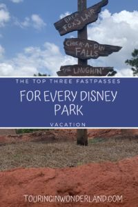 The top 3 fastpasses you need to get for every Disney World park. Make your day at Disney World better by taking advantage of the best pastpasses to get for every Disney World park. Walt Disney World Rides, Disney World Shows, Disney World Attractions, Disney World Secrets, Disney World Parks, Disney World Tips And Tricks, Disney World Vacation, Disney World Resorts, Disney Vacations