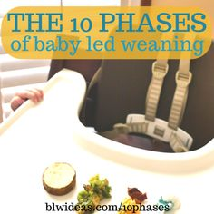 A lighthearted post on the different phases of baby led weaning