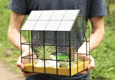 Terariu-plante-aeriene-casuta-mozaic-maini-verde-natura Mozaic, Terrarium, Vintage, Home Decor, Green, Plant, Geometry, Terrariums, Decoration Home