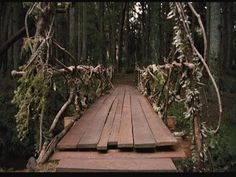 Images from the movie Bridge to Terabithia