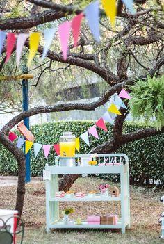 Para quem quer inspirações de decoração da festa piquenique com fotos, lembrancinhas, bolo, no jardim, parque e muito mais. Confira todas as ideias!