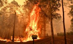 Australia fires: blazes 'too big to put out' as 140 bushfires rage in NSW and Queensland - Nexus Newsfeed Coast Australia, Queensland Australia, Iconic Australia, Western Australia, Industrial Revolution In Europe, Australia Wallpaper, Australia Landscape, Head In The Sand, Continents