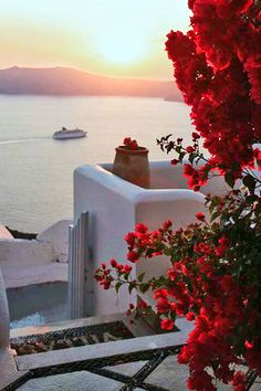 Sunset and bougainville in Santorini
