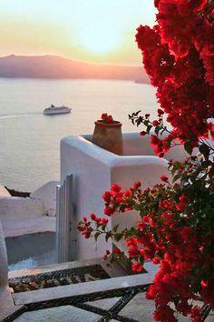 Sunset & Bougainvillea in Santorini , Greece