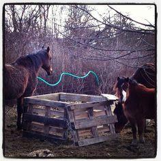 Tři koně a dřevěná bedna