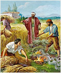 """Matthew - 24 Jesus presented another parable to them, saying, """"The kingdom of heaven may be compared to a man who sowed good seed in his field. Bible Crafts, Bible Art, Parable Of The Seeds, Parables Of Jesus, End Of The Age, Jesus Christ Images, Bible Encouragement, Biblical Art, Art Curriculum"""