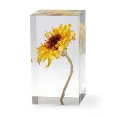 Dandelion Objet D/'Art MoMA Exclusive//MoMA Best Seller