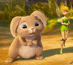 Fluffy Bunny .! [ G I F ]