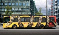 come to the zoo, our pythons are so huge they can crunch buses! #advertising