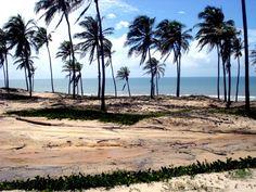 Fortaleza, Ceará (via star-mak3r)
