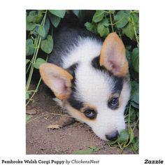 Pembroke Welsh Corgi Puppy Jigsaw Puzzle