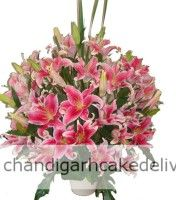 #1 website for sending flowers in Chandigarh Tricity. Same day delivery available.Online Flowers Delivery In Chandigarh For any special occasion, you want your gift to be unique, fun and something that will put a smile on the faces of your loved ones.