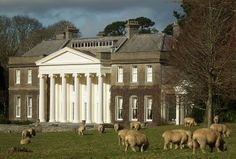 Trelissick House (NT) with Sheep Grazing by Cornishcarolin. Playing catch up!! xx on Flickr.Trelissick House - Cornwall