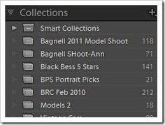Lightroom 101: Importing and Organizing Your Images