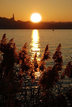 Sunset - Annecy, France