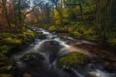 River Rush - Last one from Shaugh Prior until my next visit.