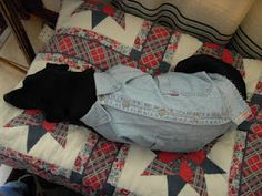 upcycled Levi's shirt for dog. click picture to see more pics