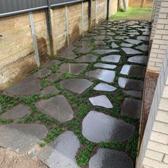 Project Steps, Outdoor Spaces, Outdoor Decor, Design Consultant, Gold Coast, Stepping Stones, Grass, This Is Us, Yard