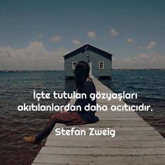 İçte tutulan gözyaşları akıtılanlardan daha acıtıcıdır. - Stefan Zweig