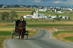 barns in pa | horse and buggy travel along a winding road in Lancaster County back ...