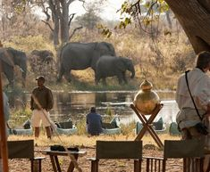 Canoe Safaris and Mokoro Safaris - see wildlife close up by river in Africa Canoe Camping, African Safari, Day Trips, Close Up, Remote, National Parks, Wildlife, River, Explore