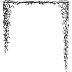 Leafy half-border ❤ liked on Polyvore featuring borders, frames, backgrounds and picture frame