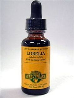 Quit smoking, all of you smokers! Lobelia Extract has been known to make you not crave nicotine. Kick the nasty habit and improve your health!   Amazon.com: Herb Pharm Lobelia Extract Supplement, 1 Ounce: Health & Personal Care