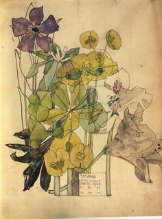 Charles Rennie Mackintosh (1868-1928). Spurge, Withyham, June, 1909. Pencil and watercolour on paper, 25.8 x 20.2 cm. Hunterian Art Gallery, University of Glasgow.