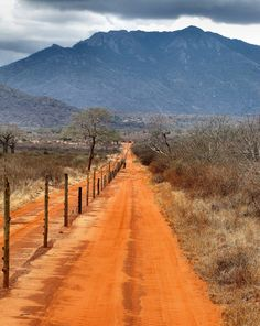 If you fancy a quick safari taster, we recommend a short duration trip for you to take in the wonderful wildlife. Our Pride of Tsavo trip takes you to Tsavo National Park- the largest in Kenya- for 3 nights, where you can try to spot the 'Big Five' in the wild.