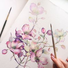 "crossconnectmag: "" Watercolors by Katerina Pytina Katerina Pytina is a young and very talented watercolor artist from Saratov, Russian Federation. She does some absolutely gorgeous paintings, mainly of flowers and fruits. At @kataucha on Instagram..."