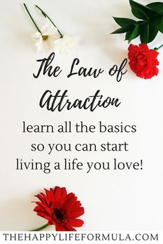 Have you heard of The Law of Attraction but you're not exactly sure what it is or how you can apply it to your own life? This post tells you the basics of The Law of Attraction and how you can use it to start living a life you love today! Click through to
