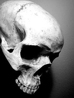Skull_by_BasDeEsch