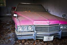 Dusty pink dreams -- March 2011