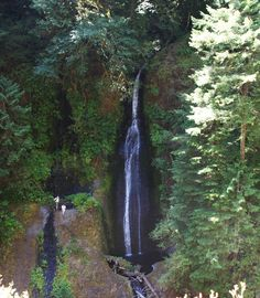 Loowit Falls, at the 3.2 mile marker along the Eagle Creek Trail.   Columbia gorge, OR.  08/2010.