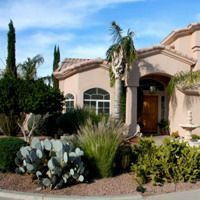 Tips For Gardening In The Southwest at Ideal Home & Garden