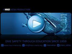 NAUI Scuba Diving Skill Levels - Scuba Dive Junkie | Learn Scuba Diving