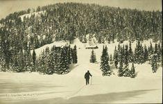 Oppland fylke Jevnaker kommune Vestend skihytte i Nordmarka. Vintermotiv med skihytte. Utg Kunstforlaget National A/S, Ubrukt 1908