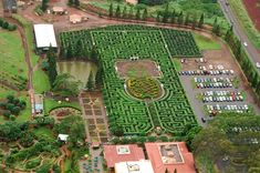 The world's longest maze is at the Dole Plantation on Oahu, Hawai'i. Comprised of 11,400 tropical native plants and covering 3.11 miles, Dole has not only created the largest maze on earth; the company has taken it online where you can attempt to navigate the maze virtually.