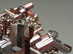 ルチル(Rutile)    Diamantina,Ouro Preto,Minas Gerais,Southeast Region,Brazil TiO2 画像の幅約1.5cm  光沢の強い赤褐色をしたルチルの結晶です。 双晶になった結晶が網の目のように連なっています。